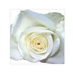 Flower White Rose Lying Small Satin Scarf (square) by Nexatart