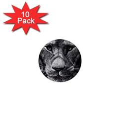 My Lion Sketch 1  Mini Magnet (10 Pack)