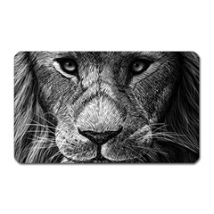 My Lion Sketch Magnet (rectangular) by 1871930