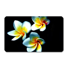 Flowers Black White Bunch Floral Magnet (rectangular) by Nexatart