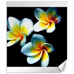 Flowers Black White Bunch Floral Canvas 20  X 24   by Nexatart