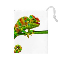 Chameleons Drawstring Pouches (large)