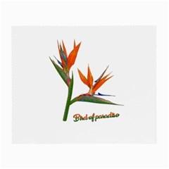 Bird Of Paradise Small Glasses Cloth