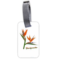 Bird Of Paradise Luggage Tags (one Side)  by Valentinaart