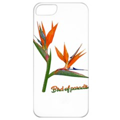 Bird Of Paradise Apple Iphone 5 Classic Hardshell Case by Valentinaart