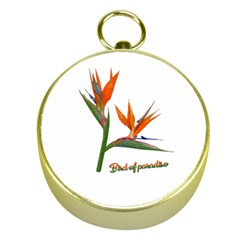 Bird Of Paradise Gold Compasses