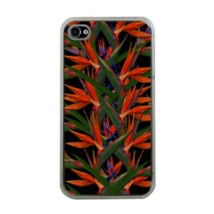 Bird Of Paradise Apple Iphone 4 Case (clear) by Valentinaart