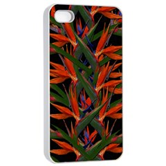 Bird Of Paradise Apple Iphone 4/4s Seamless Case (white) by Valentinaart