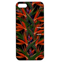 Bird Of Paradise Apple Iphone 5 Hardshell Case With Stand by Valentinaart