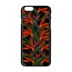Bird Of Paradise Apple Iphone 6/6s Black Enamel Case