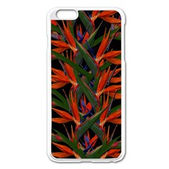 Bird Of Paradise Apple Iphone 6 Plus/6s Plus Enamel White Case by Valentinaart