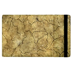 Cracked Skull Bone Surface A Apple Ipad 2 Flip Case by MoreColorsinLife