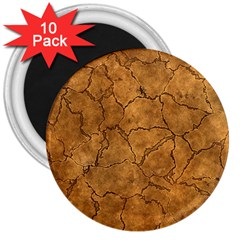 Cracked Skull Bone Surface C 3  Magnets (10 Pack)  by MoreColorsinLife