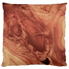 Fantastic Wood Grain,brown Large Cushion Case (one Side) by MoreColorsinLife