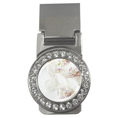 Orchids Flowers White Background Money Clips (cz)