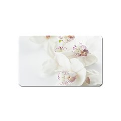 Orchids Flowers White Background Magnet (name Card)