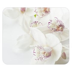 Orchids Flowers White Background Double Sided Flano Blanket (small)