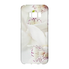Orchids Flowers White Background Samsung Galaxy S8 Hardshell Case  by Nexatart