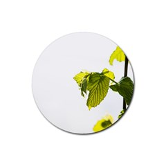 Leaves Nature Rubber Coaster (round)