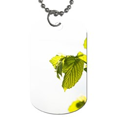 Leaves Nature Dog Tag (two Sides) by Nexatart