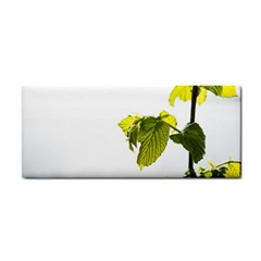 Leaves Nature Cosmetic Storage Cases
