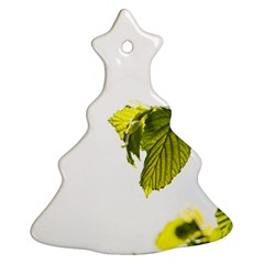 Leaves Nature Christmas Tree Ornament (two Sides)