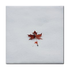Winter Maple Minimalist Simple Tile Coasters by Nexatart