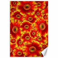 Gerbera Flowers Nature Plant Canvas 12  X 18   by Nexatart
