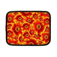 Gerbera Flowers Nature Plant Netbook Case (small)  by Nexatart