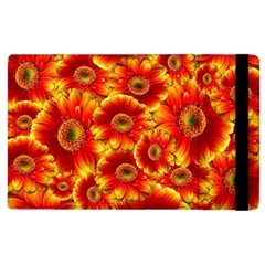 Gerbera Flowers Nature Plant Apple Ipad 3/4 Flip Case by Nexatart