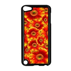 Gerbera Flowers Nature Plant Apple Ipod Touch 5 Case (black) by Nexatart