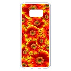 Gerbera Flowers Nature Plant Samsung Galaxy S8 Plus White Seamless Case