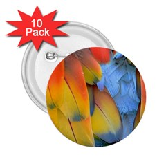Spring Parrot Parrot Feathers Ara 2 25  Buttons (10 Pack)  by Nexatart