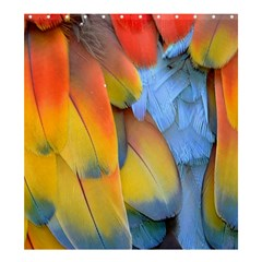Spring Parrot Parrot Feathers Ara Shower Curtain 66  X 72  (large)