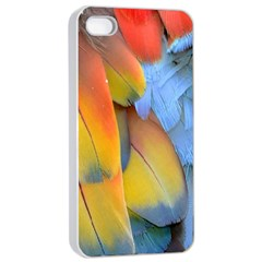 Spring Parrot Parrot Feathers Ara Apple Iphone 4/4s Seamless Case (white) by Nexatart