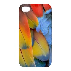 Spring Parrot Parrot Feathers Ara Apple Iphone 4/4s Premium Hardshell Case