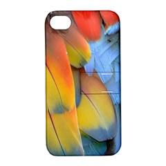 Spring Parrot Parrot Feathers Ara Apple Iphone 4/4s Hardshell Case With Stand by Nexatart