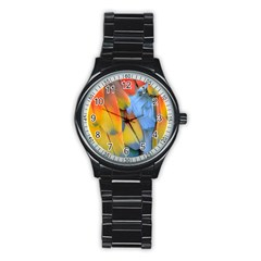 Spring Parrot Parrot Feathers Ara Stainless Steel Round Watch by Nexatart