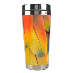 Spring Parrot Parrot Feathers Ara Stainless Steel Travel Tumblers by Nexatart