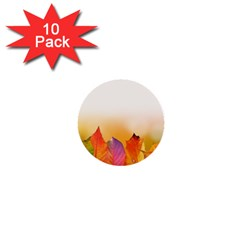 Autumn Leaves Colorful Fall Foliage 1  Mini Buttons (10 Pack)  by Nexatart