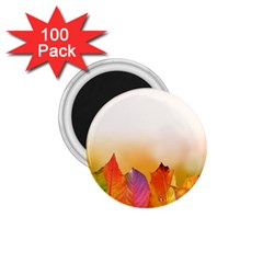 Autumn Leaves Colorful Fall Foliage 1 75  Magnets (100 Pack)  by Nexatart