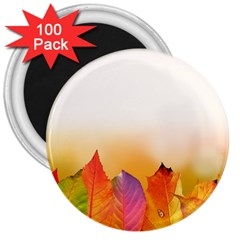 Autumn Leaves Colorful Fall Foliage 3  Magnets (100 Pack) by Nexatart