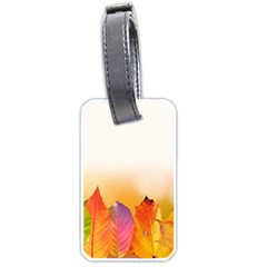 Autumn Leaves Colorful Fall Foliage Luggage Tags (two Sides) by Nexatart