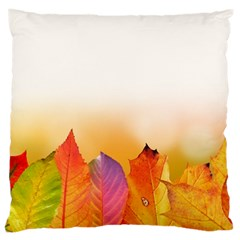 Autumn Leaves Colorful Fall Foliage Large Cushion Case (two Sides) by Nexatart