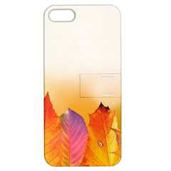 Autumn Leaves Colorful Fall Foliage Apple Iphone 5 Hardshell Case With Stand by Nexatart