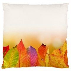 Autumn Leaves Colorful Fall Foliage Large Flano Cushion Case (one Side) by Nexatart