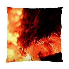 Fire Log Heat Texture Standard Cushion Case (two Sides)