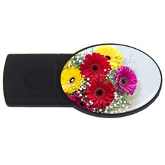 Flowers Gerbera Floral Spring Usb Flash Drive Oval (2 Gb) by Nexatart