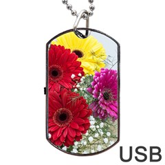Flowers Gerbera Floral Spring Dog Tag Usb Flash (one Side) by Nexatart