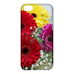 Flowers Gerbera Floral Spring Apple Iphone 5c Hardshell Case by Nexatart